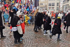 Teakwondo Panda Gruppe